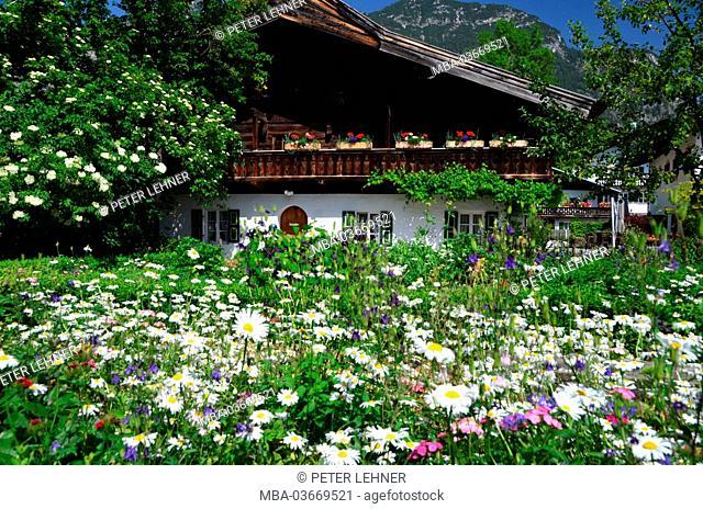 Germany, Bavaria, Garmisch-Partenkirchen, Mohrenplatz (square), cottage gardens