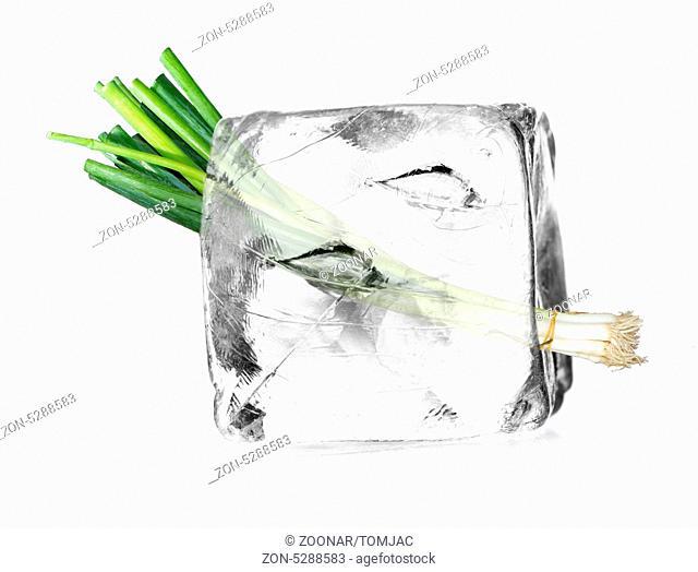 Lauch in einem Eiswürfel freigestellt, isoliert mit weißem Hintergrund