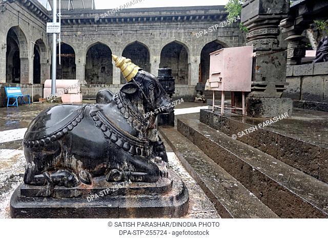 Nandi statue, mallikarjuna temple, solapur, maharashtra, India, Asia