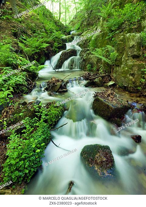 Marianegre stream waterfalls. Springtime at Montseny Natural Park. Barcelona province, Catalonia, Spain