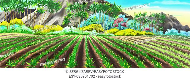 Digital painting of the Chinese rice fields in sunny summer day. Panorama