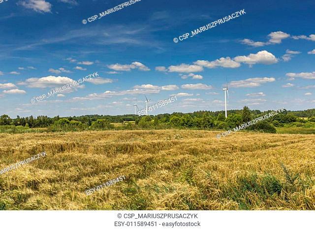 Wind turbines in Suwalki Landscape Park, Poland
