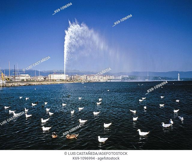 Geneva is the second-most-populous city in Switzerland after Zürich and is the most populous city of Romandie the French-speaking part of Switzerland