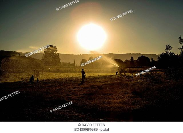 Field landscape with adults and children playing with agricultural sprinkler at sunset