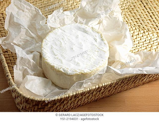 Brillat Savarin, French Cheese produced from Cow's Milk