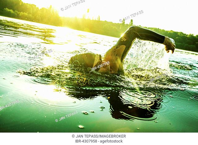 Man training, swimming in lake, Fühlinger See, Cologne, North Rhine-Westphalia, Germany