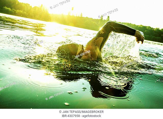 Man training, swimming in lake, Fühlinger See, Cologne, North Rhine-Westphalia, Germany