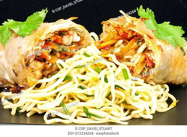 Spring Roll and Noodles