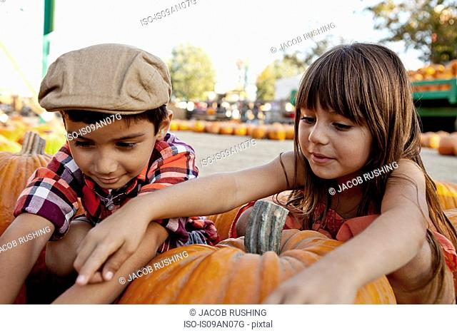 Boy and girl reaching for pumpkins in farmyard