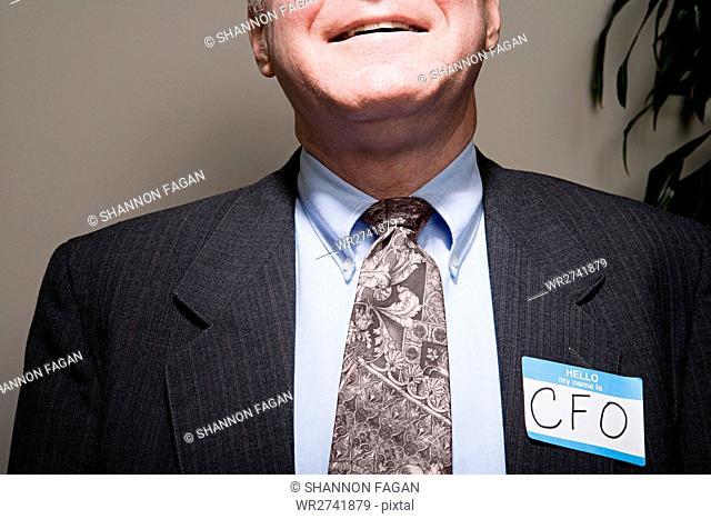 Mature businessman achieving success