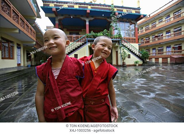 Two young monks  Buddhist monks are living in monastries in and around Kathmandu  Many are illegal refugees from Tibet but live quietly within the walls of...