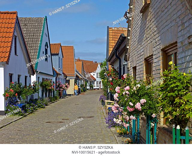 Houses in the fishing village of Holm in Schleswig, Schleswig-Flensburg District, Schleswig-Holstein, Germany