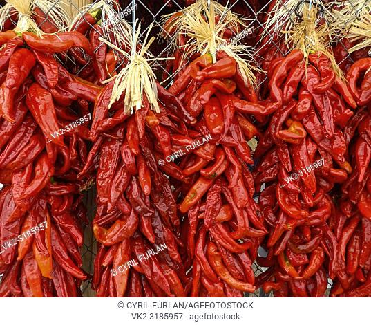 Chili Peppers Hatch New Mexico, Chili capital of New Mexico