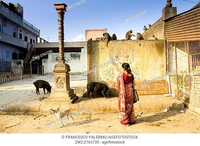 Ordinary life around of sun Temple named Surya Mandir. Jaipur, Rajasthan, India
