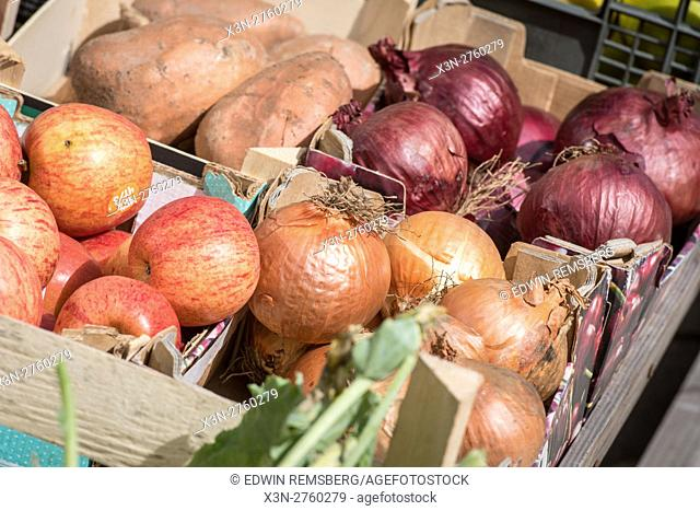 UK, England, Yorkshire, Richmond - Vegetables for sale in a local outdoor market in the city of Richmond, located in Northern Yorkshire