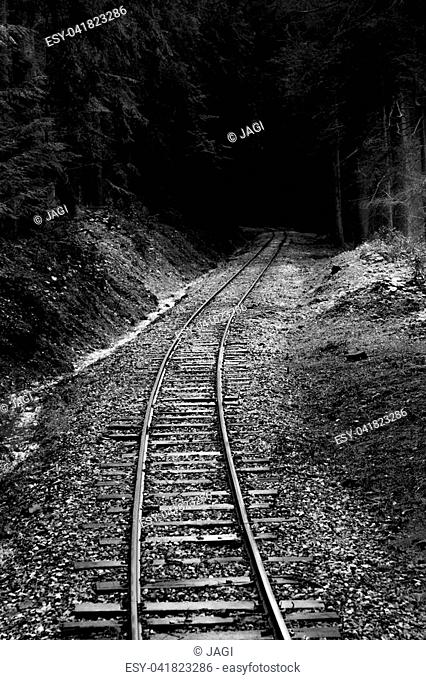 Old railroad leading through forest