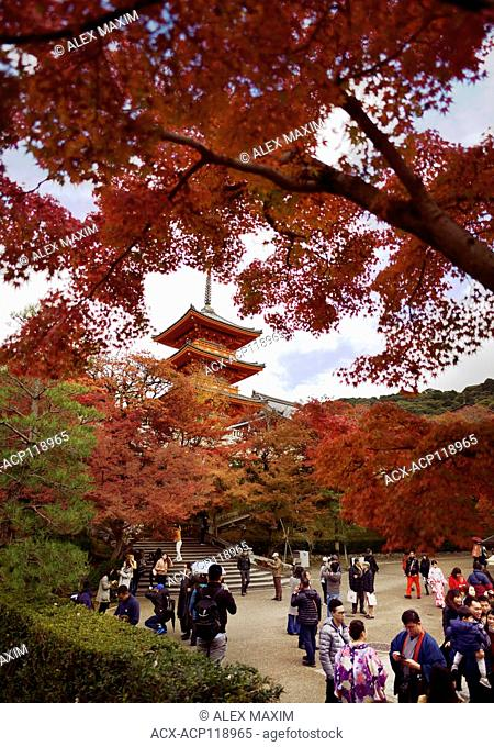 People visiting Kiyomizu-dera Buddhist temple with Sanjunoto pagoda in the background in a colorful fall scenery, Kyoto, Japan 2017