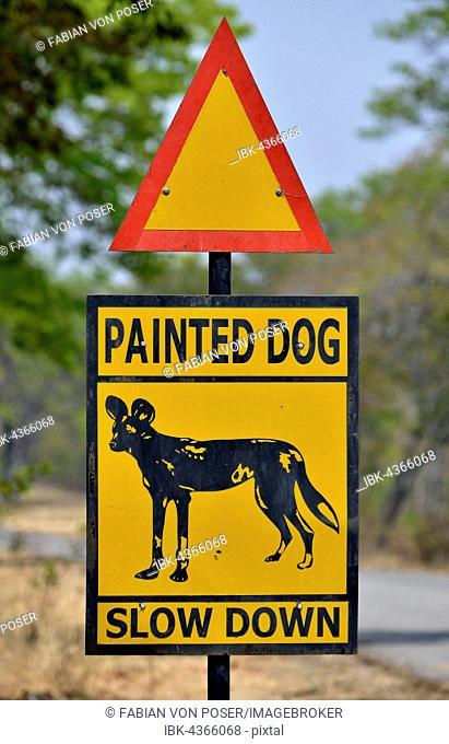 Warning Sign Painted dog, Attention African Wild Dogs, Hwange National Park, near Hwange, Matabeleland North Province, Zimbabwe
