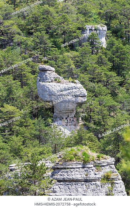 France, Lozere, Saint Pierre des Tripiers, Les Arcs de Saint-Pierre, Causse Mejean, the rock called La Poule de Houdan