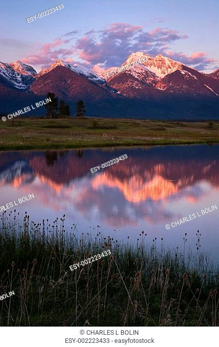 Snow-capped peaks of the Mission Mountain Range reflected in a small pond near Ronan, Lake County, Montana, USA