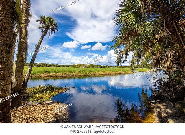 Myakka River State Park in Sarasota FLorida