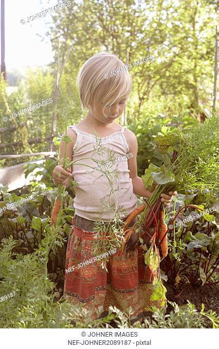 Girl holding vegetables