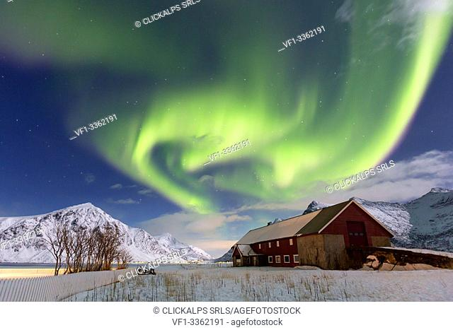 Northern lights (aurora borealis) over a barn at Flakstad, lofoten islands, nordland, norway, europe