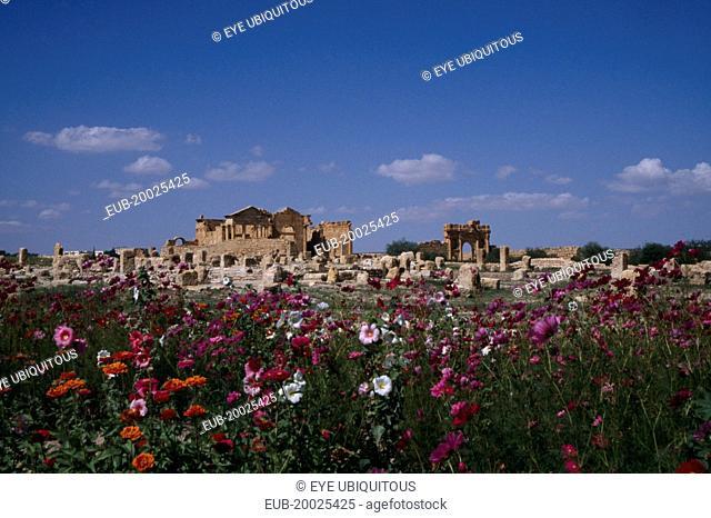 Roman ruins viewed across field of wild flowers