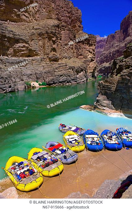 Confluence of the Colorado River and Havasu Creek, Whitewater rafting trip oar trip on the Colorado River in Grand Canyon, Grand Canyon National Park