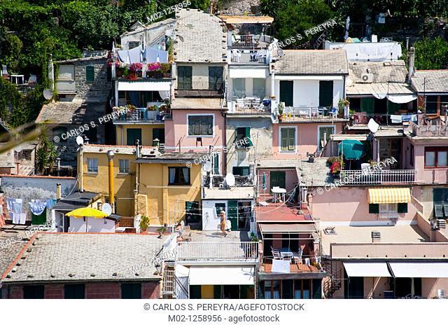View of Vernazza, Cinque Terra  Liguria, Italy