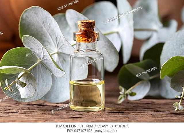 A bottle of essential oil with fresh eucalyptus twigs