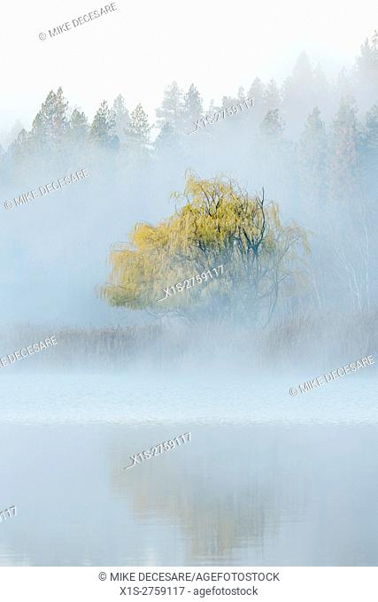 Fog lifts over a lake in Eastern Washington