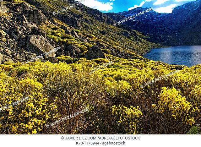 Laguna del Duque. Sierra del Barco. Sierra de Gredos Regional Park. Avila province. Castilla y Leon. Spain