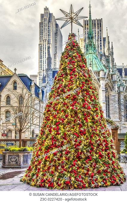 Lotte New York Palace - View to the luxury hotel courtyard decorated for Christmas during the holidays with Saint Patricks Cahtedral & theRockefeller Building...