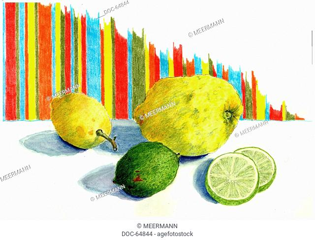 illustration - two lemons - one lime - two lime slices on white background - pattern of cloth