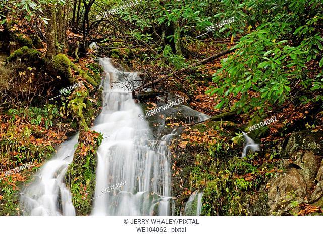 Stream, Oconaluftee area, Autumn, Great Smoky Mtns National Park, NC