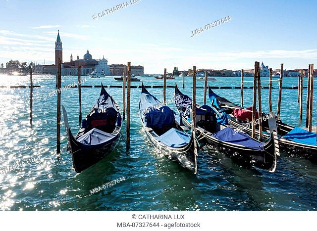 Venice, Riva degli Schiavoni, morning light, gondolas