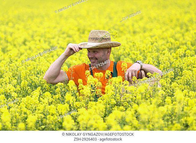 A farmer in a mustard field