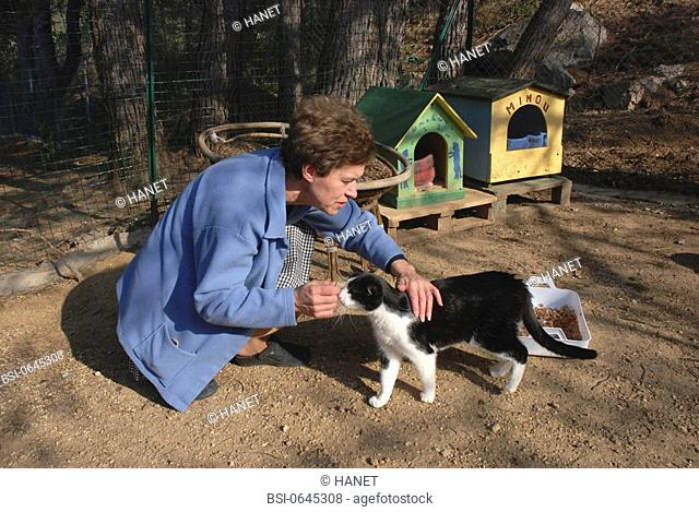 Photo essay. Association for the protection of animal in Arles and in the Baux valley. Volunteer taking care and fondling a cat