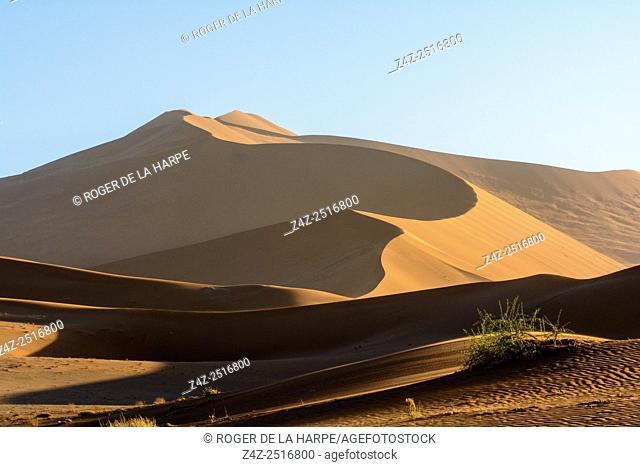 Desert scenery. Namib Sand Sea. Sossusvlei. Namib-Naukluft National Park. Near Sesriem. Namibia