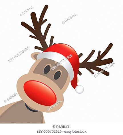 rudolph reindeer red nose and hat