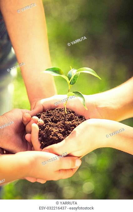 Family holding young plant in hands against green spring background. Earth day ecology holiday concept