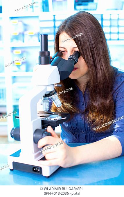 Young woman using microscope in the laboratory