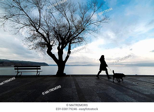 Bench and tree silhouette viewing to lake and woman walking her dog