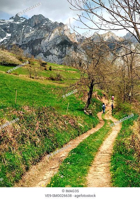Trail near Andara Massif, Liébana valley, Picos de Europa National Park and Biosphere Reserve, Cantabria province, Spain