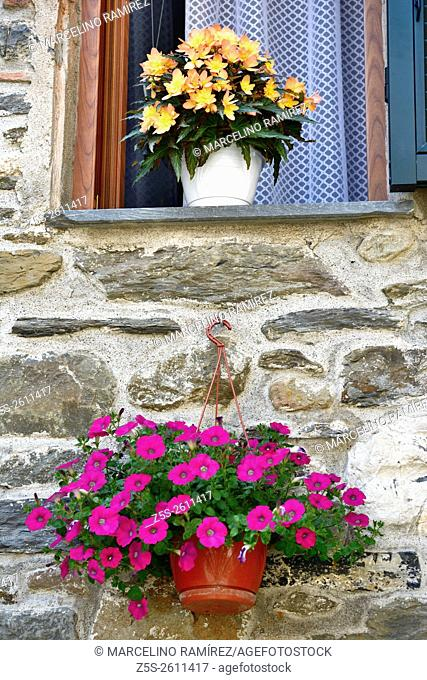 Flowers and potted in a house. Detail of the facade. Vernazza, Cinque Terre, La Spezia, Liguria, Italy