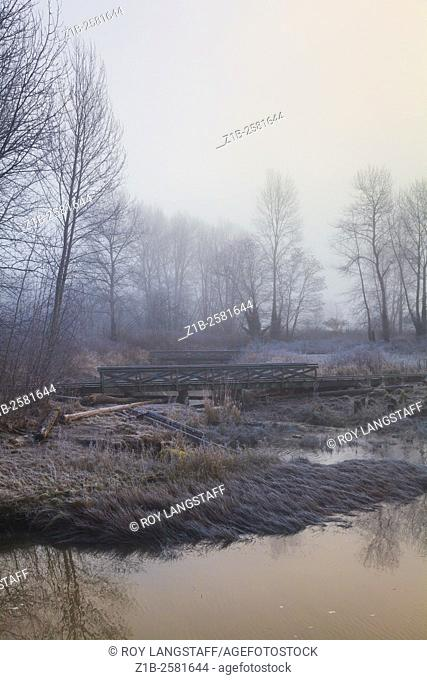 Early foggy morning at Fraser River Park in Vancouver