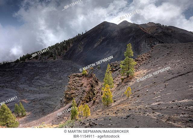 Duraznero volcano, field of lava of the San Juan eruption, Ruta de los Volcanes, Volcano Route, La Palma, Canary Islands, Spain, Europe