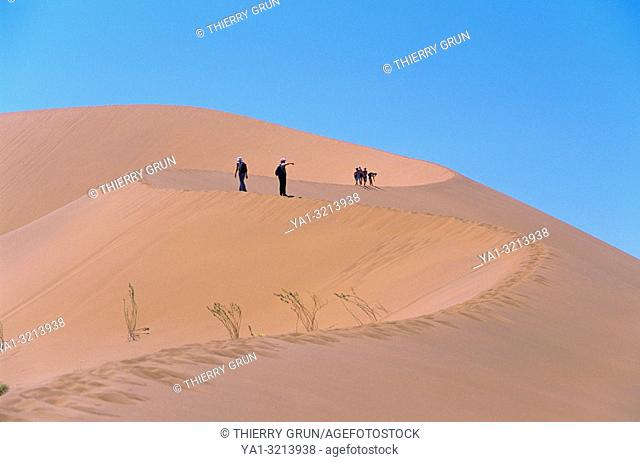 Namibia, Namib-Naukluft National park, Sossusvlei, hike on sand dune
