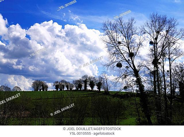 Landscape of the countryside in april (North Mayenne, Pays de la Loire, France)